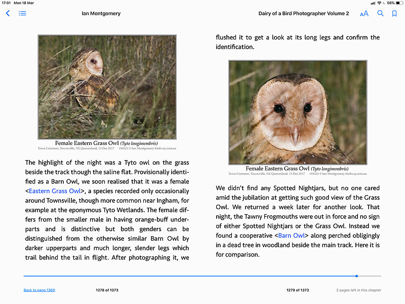 Screen shot from Diary of a Bird Photographer Volume 2: subject Eastern Grass Owl