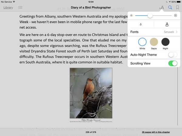 Screen shot of iBook formatting options